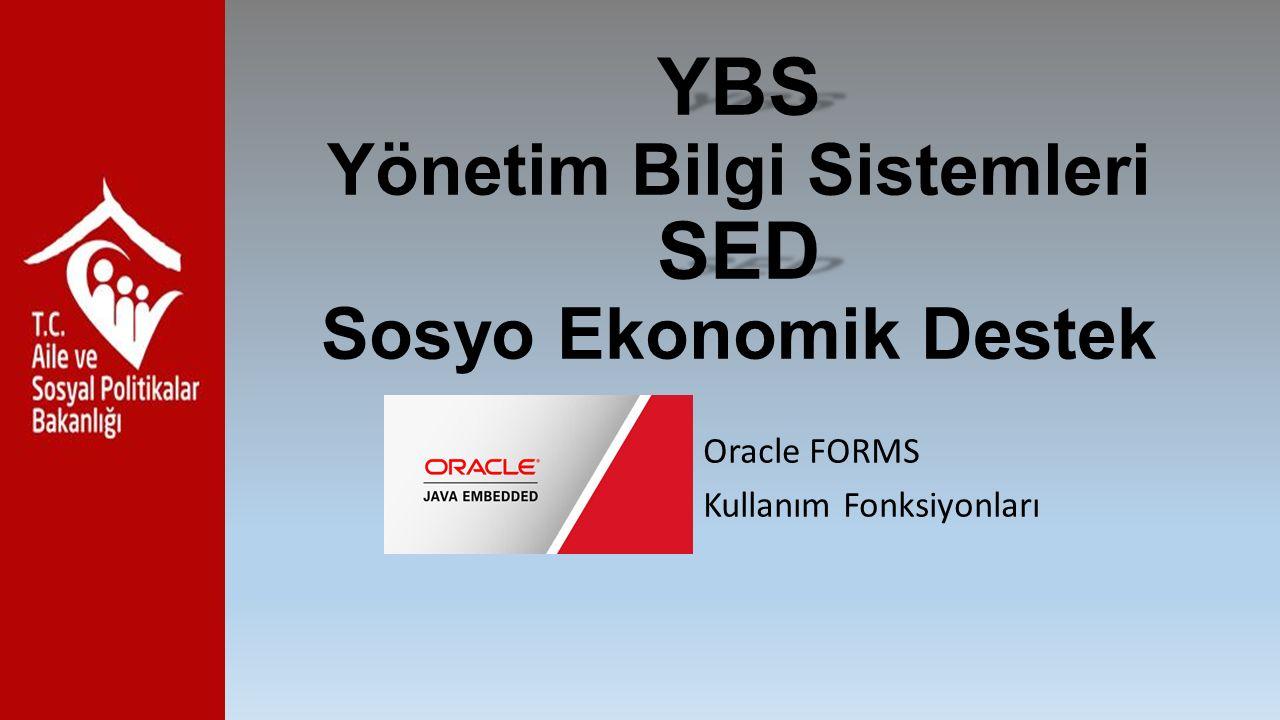 YBS Yönetim Bilgi Sistemleri SED Sosyo Ekonomik Destek