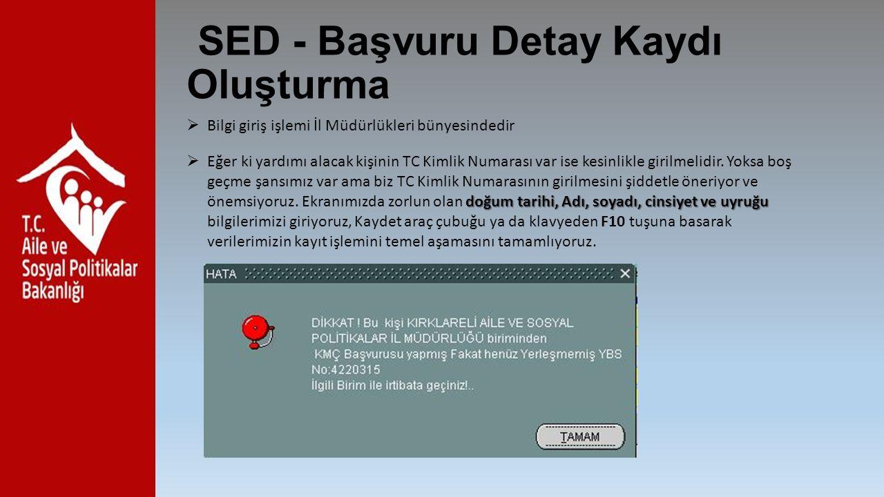 SED - Başvuru Detay Kaydı Oluşturma