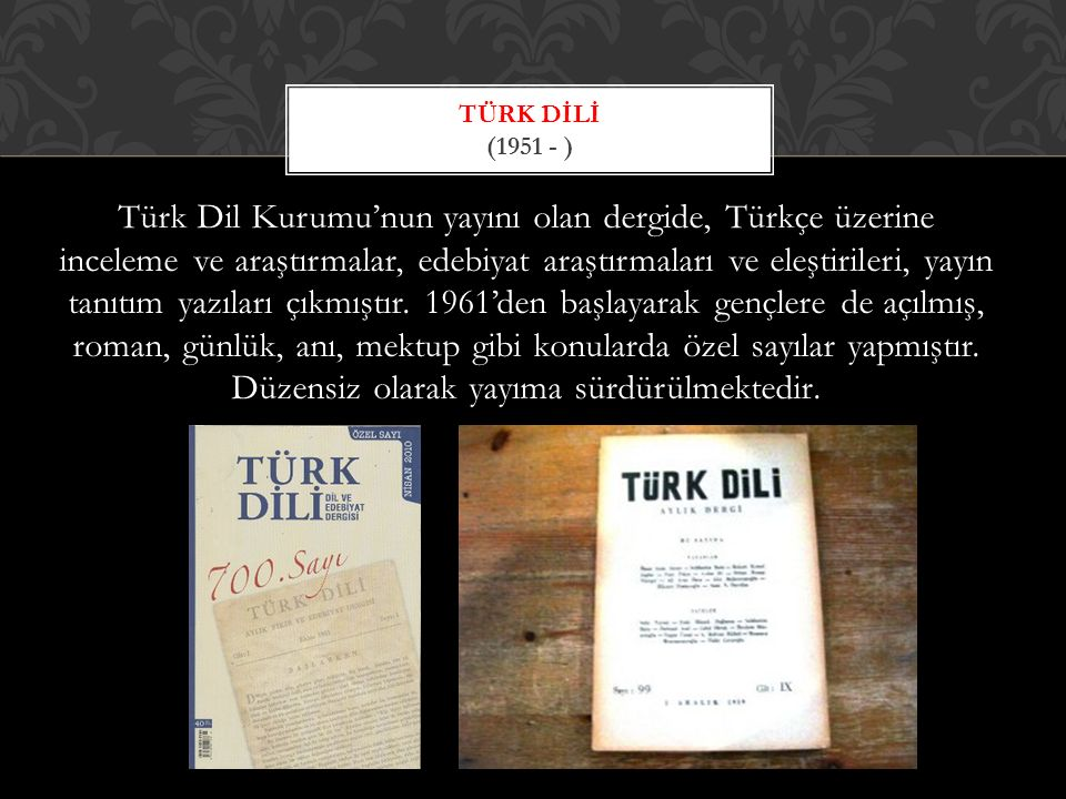 Türk Dİlİ (1951 - )