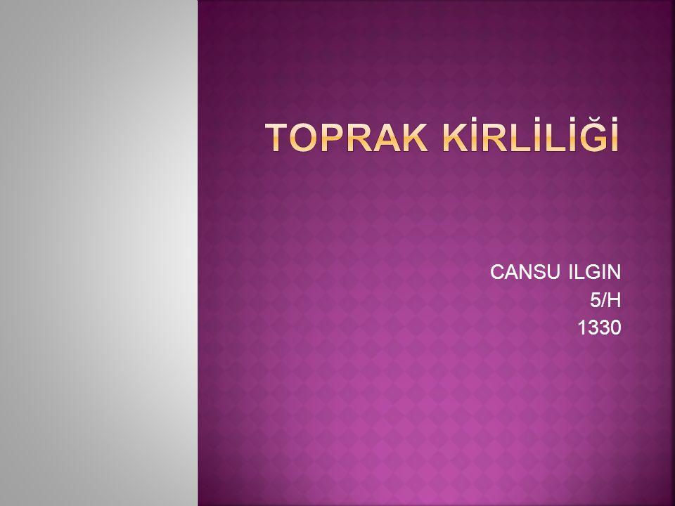 TOPRAK KİRLİLİĞİ CANSU ILGIN 5/H 1330
