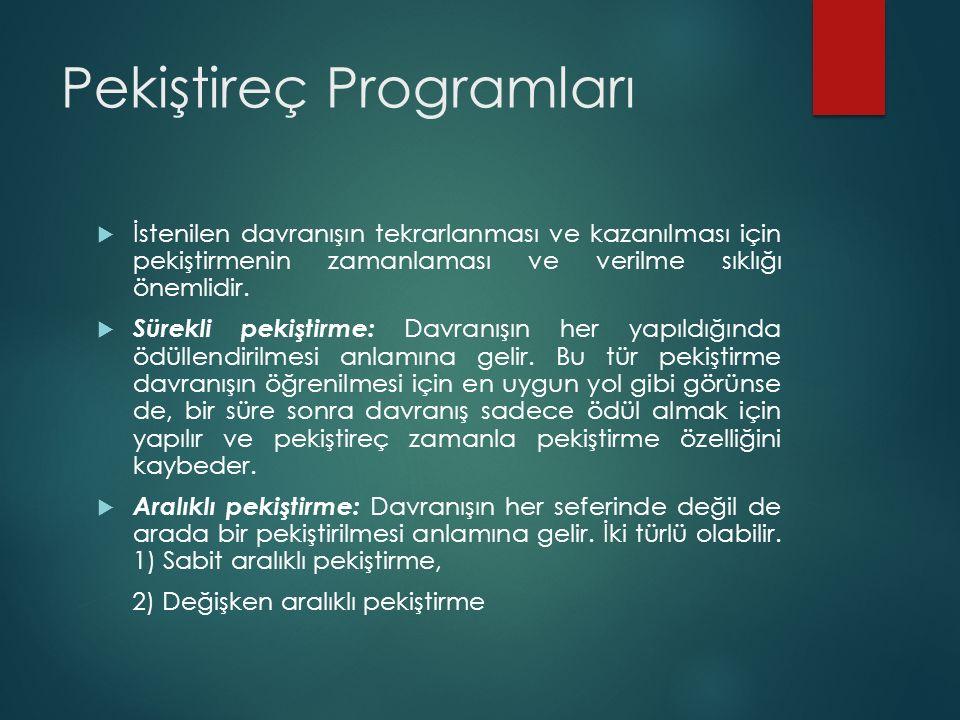 Pekiştireç Programları