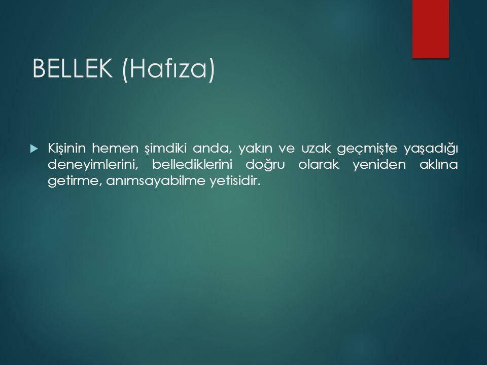 BELLEK (Hafıza)