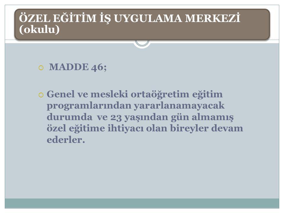 ÖZEL EĞİTİM İŞ UYGULAMA MERKEZİ (okulu)