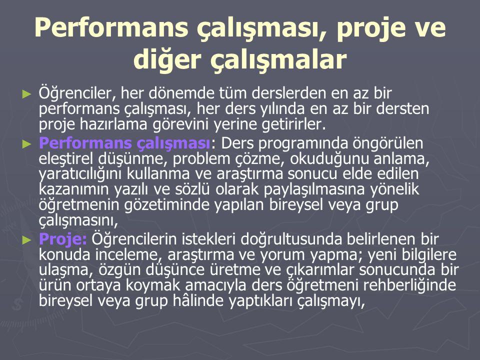 Performans çalışması, proje ve diğer çalışmalar