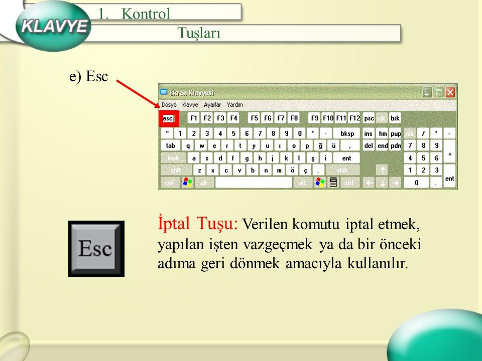 Kontrol Tuşları. e) Esc.