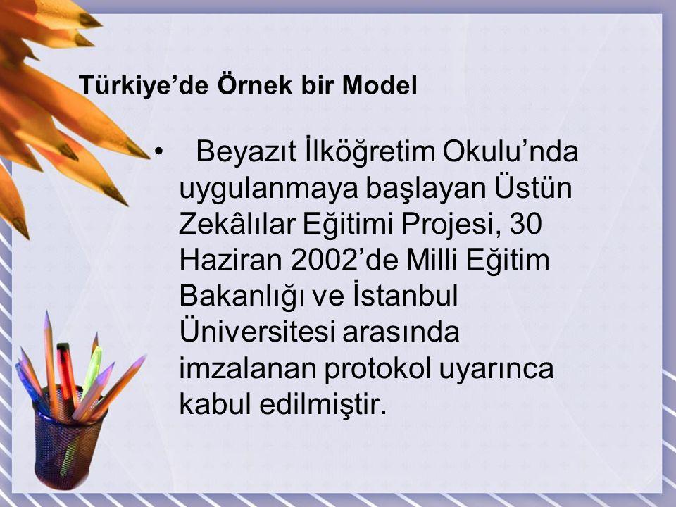 Türkiye'de Örnek bir Model