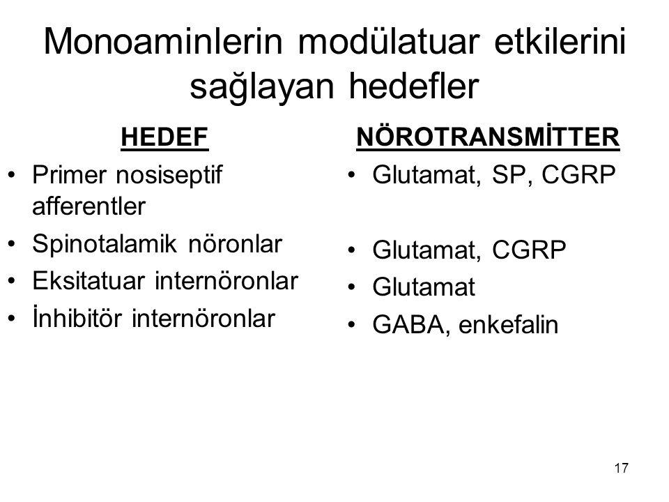 Monoaminlerin modülatuar etkilerini sağlayan hedefler