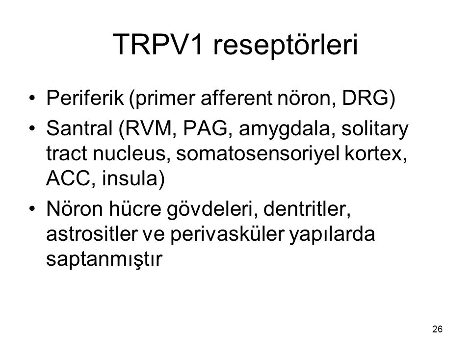 TRPV1 reseptörleri Periferik (primer afferent nöron, DRG)