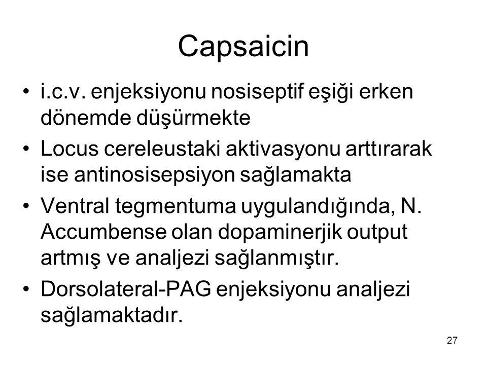 Capsaicin i.c.v. enjeksiyonu nosiseptif eşiği erken dönemde düşürmekte
