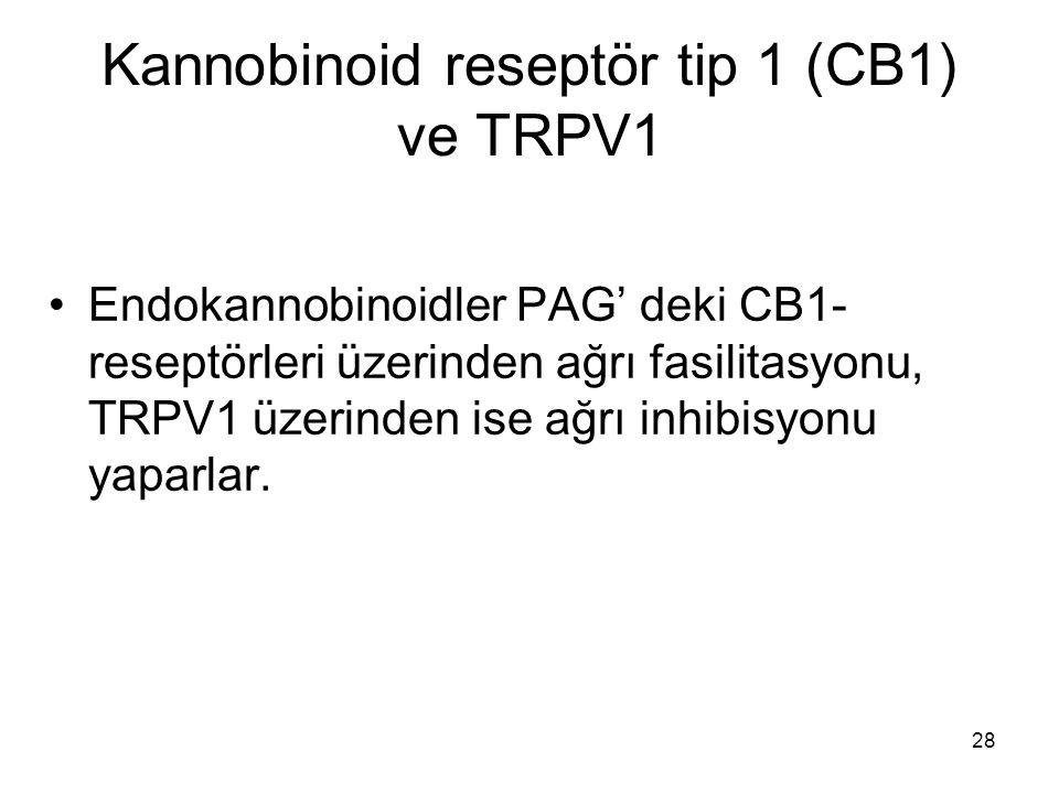 Kannobinoid reseptör tip 1 (CB1) ve TRPV1