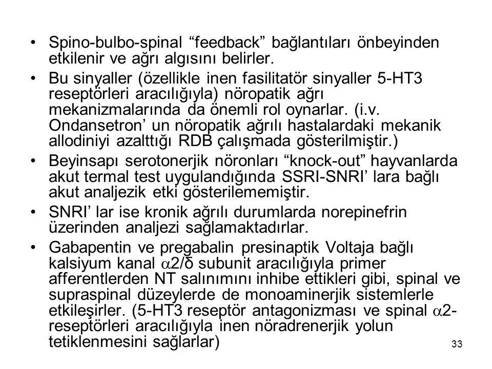 Spino-bulbo-spinal feedback bağlantıları önbeyinden etkilenir ve ağrı algısını belirler.