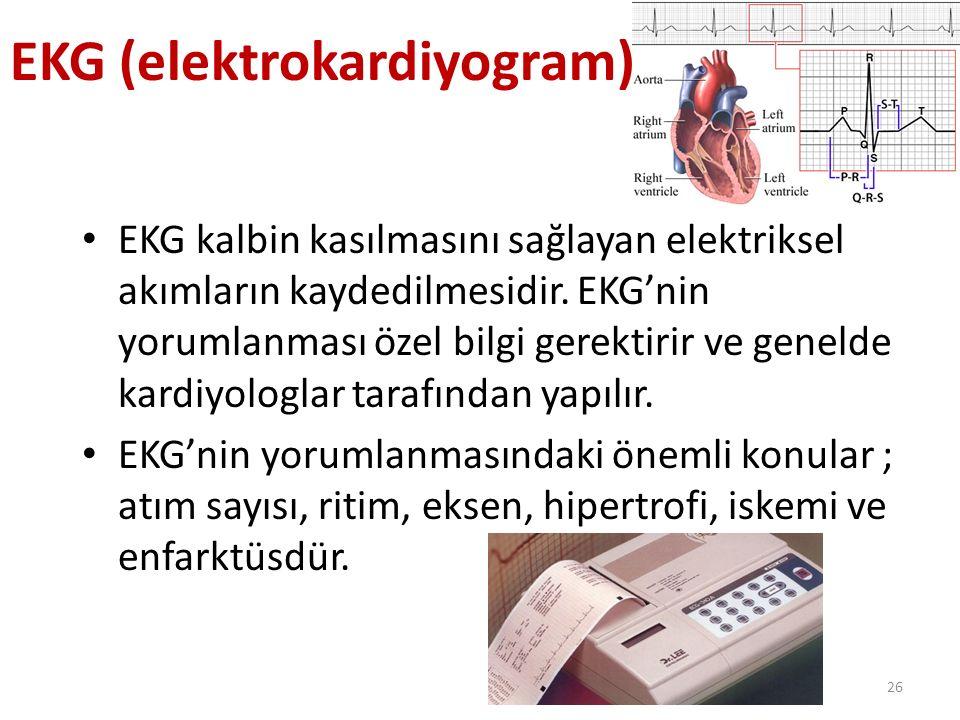 EKG (elektrokardiyogram)