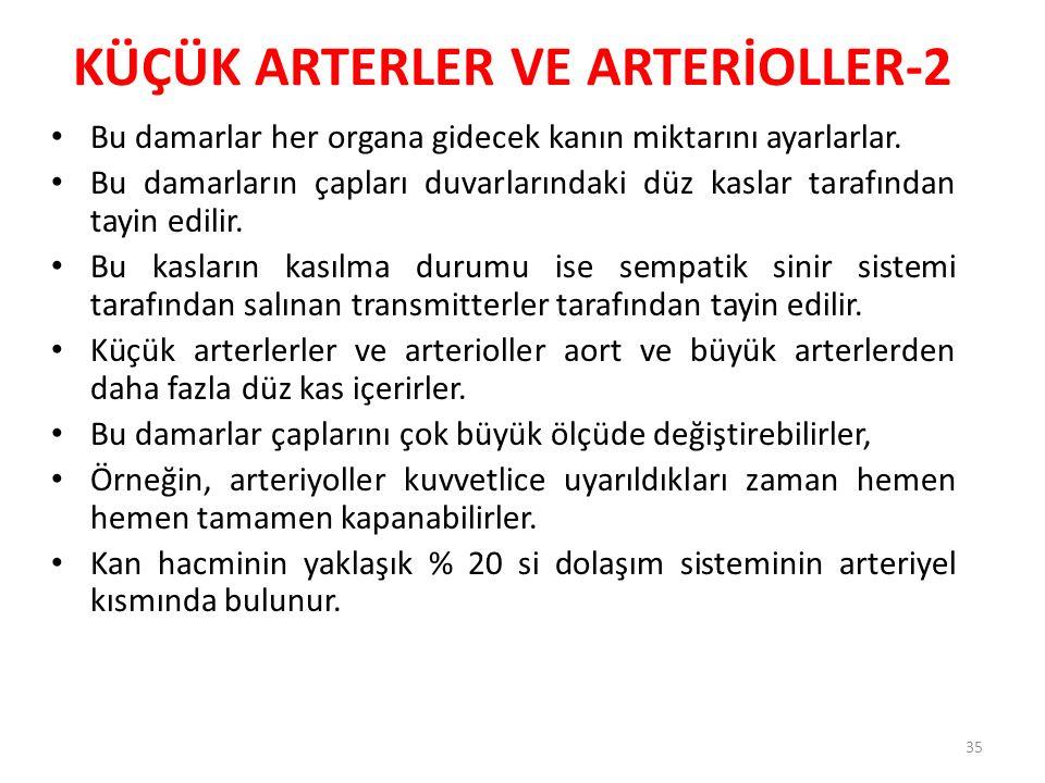 KÜÇÜK ARTERLER VE ARTERİOLLER-2
