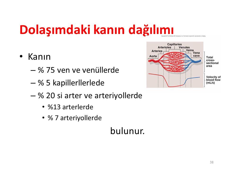 Dolaşımdaki kanın dağılımı