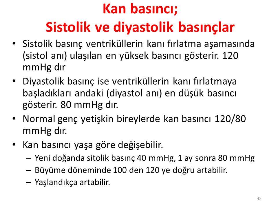 Kan basıncı; Sistolik ve diyastolik basınçlar