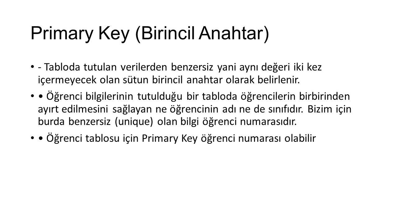 Primary Key (Birincil Anahtar)