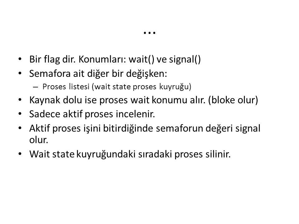 ... Bir flag dir. Konumları: wait() ve signal()