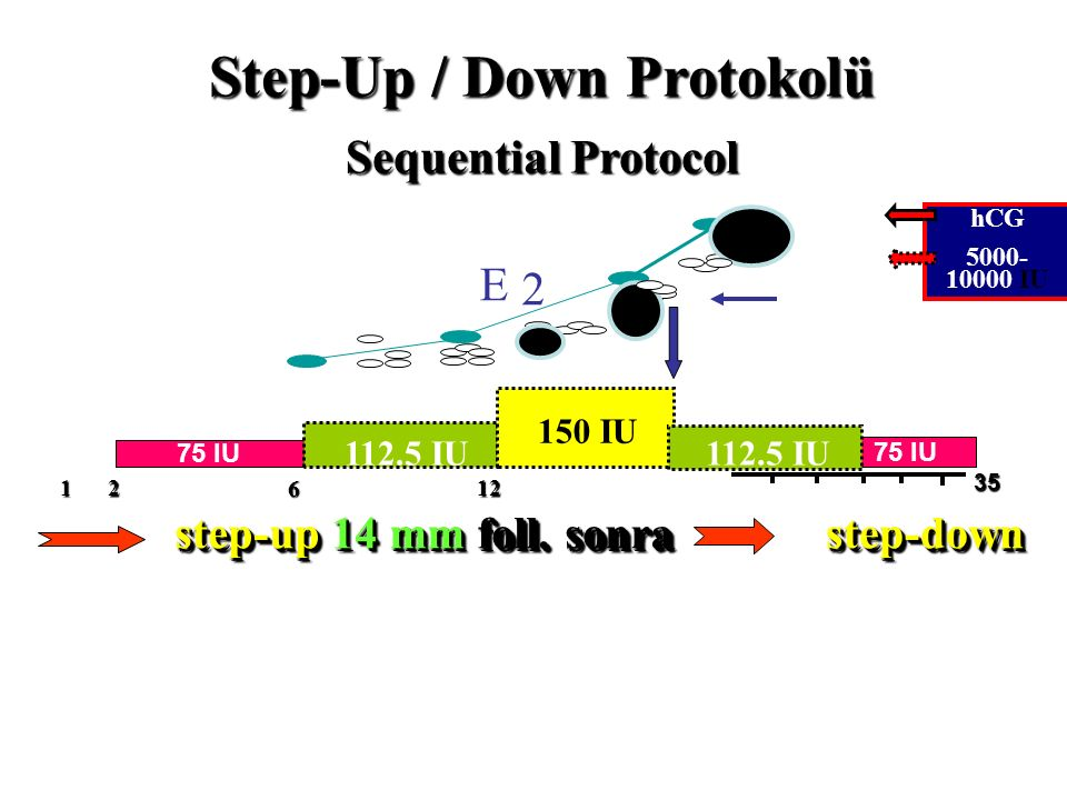 Step-Up / Down Protokolü