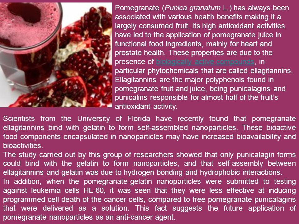 Pomegranate (Punica granatum L