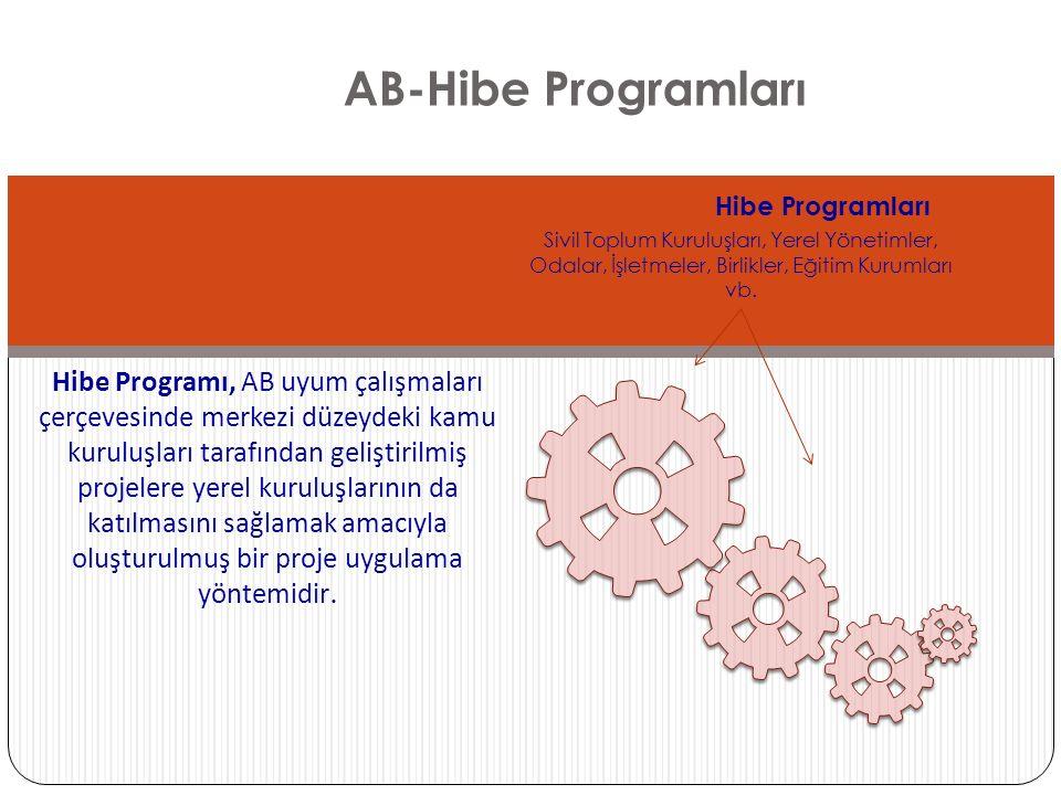 AB-Hibe Programları Hibe Programları. Sivil Toplum Kuruluşları, Yerel Yönetimler, Odalar, İşletmeler, Birlikler, Eğitim Kurumları vb.