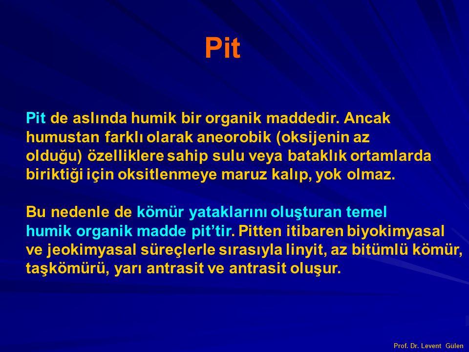 Pit Pit de aslında humik bir organik maddedir. Ancak