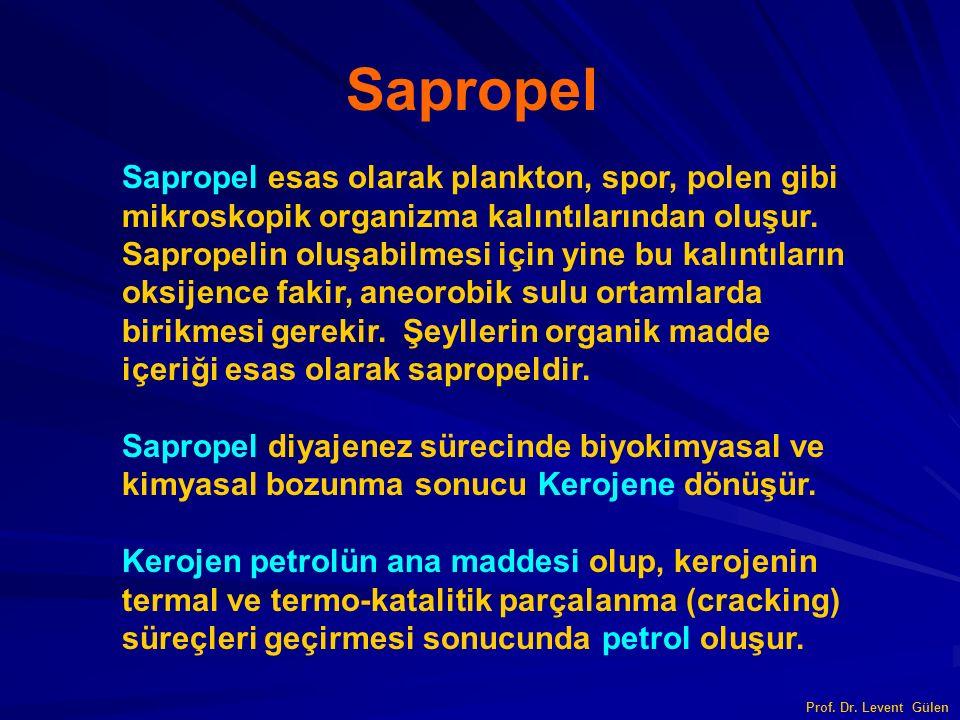 Sapropel Sapropel esas olarak plankton, spor, polen gibi