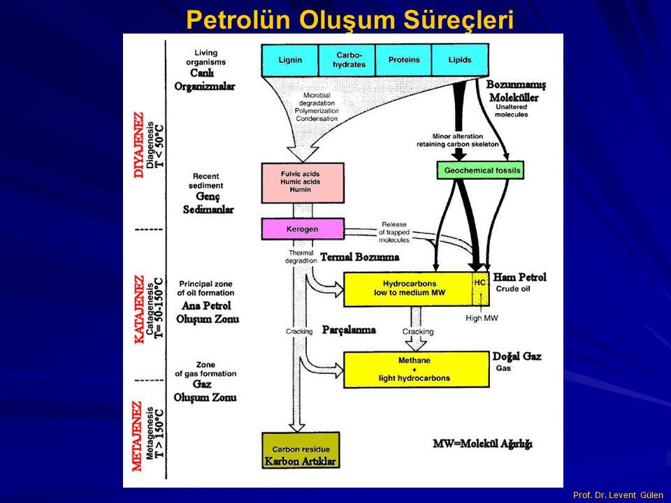 Petrolün Oluşum Süreçleri