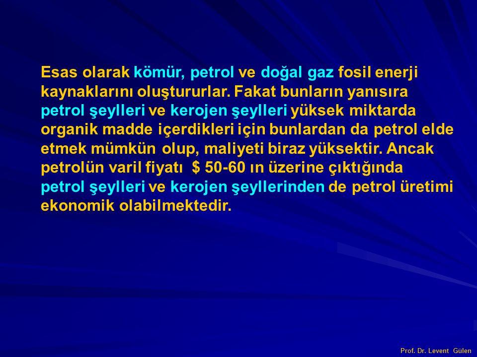 Esas olarak kömür, petrol ve doğal gaz fosil enerji