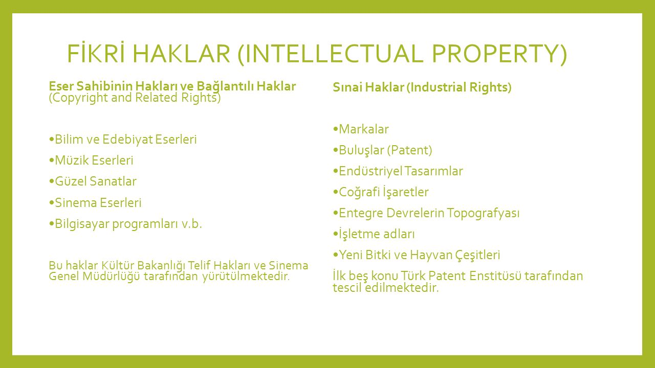 FİKRİ HAKLAR (INTELLECTUAL PROPERTY)