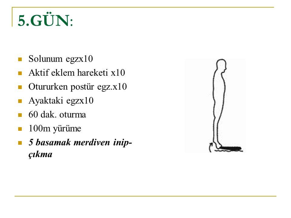 5.GÜN: Solunum egzx10 Aktif eklem hareketi x10