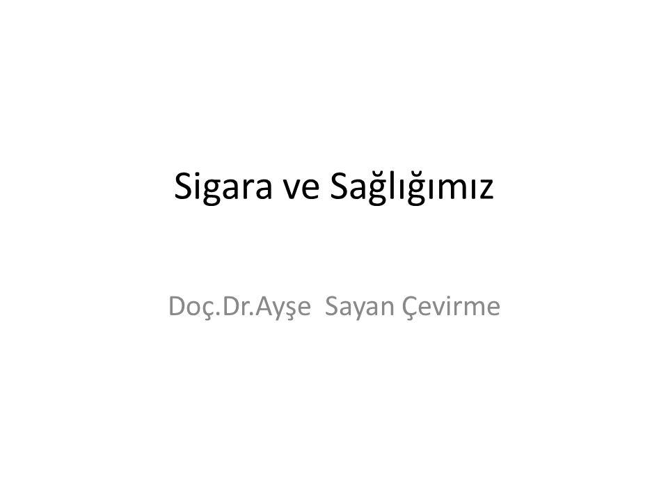 Doç.Dr.Ayşe Sayan Çevirme