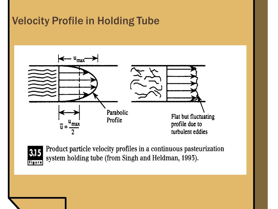 Velocity Profile in Holding Tube
