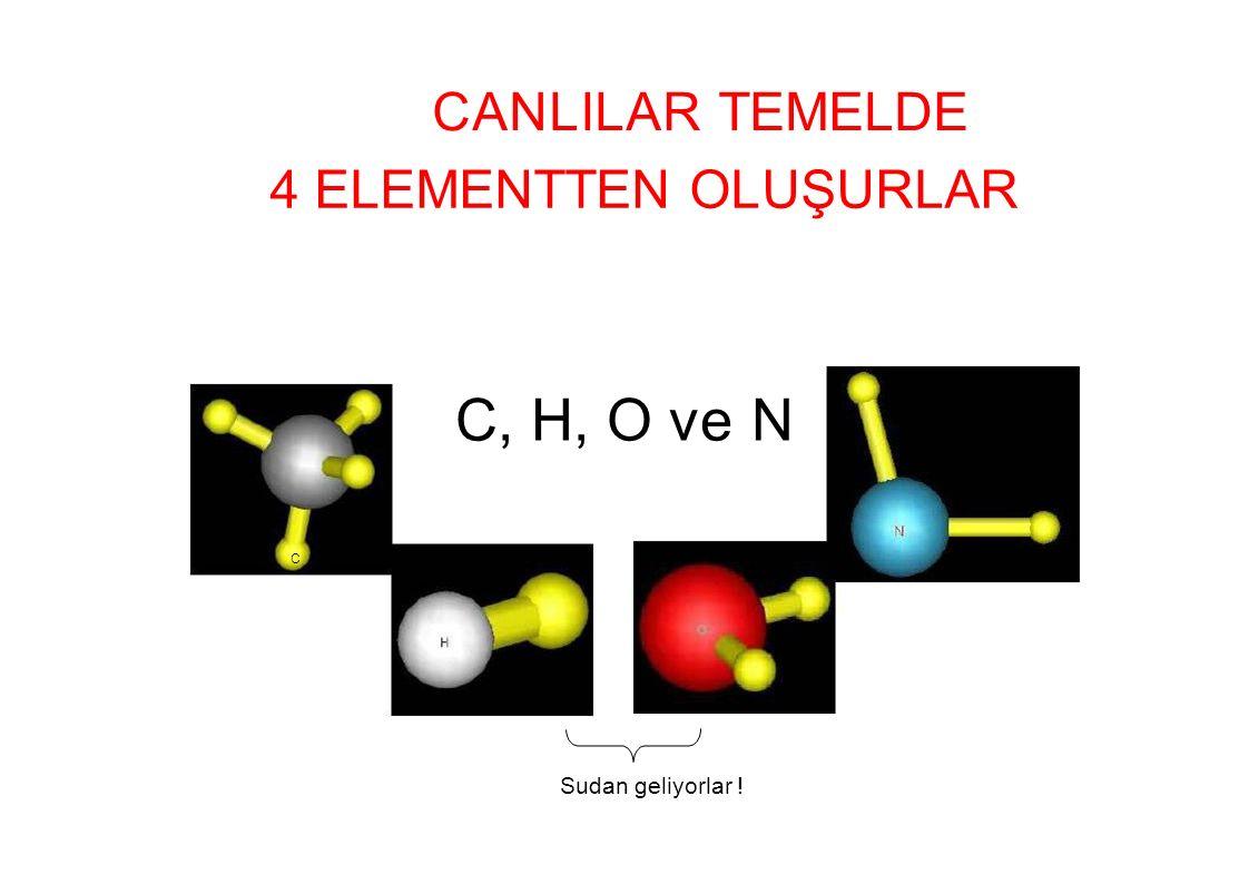 C, H, O ve N CANLILAR TEMELDE 4 ELEMENTTEN OLUŞURLAR