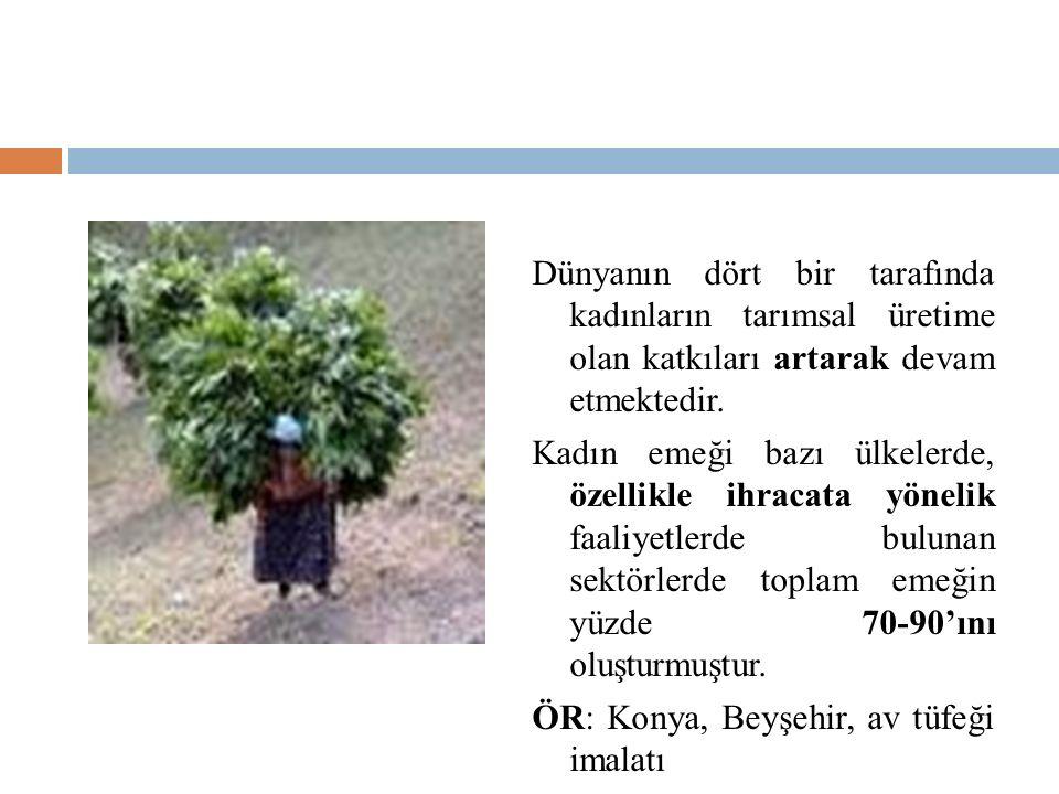 Dünyanın dört bir tarafında kadınların tarımsal üretime olan katkıları artarak devam etmektedir.