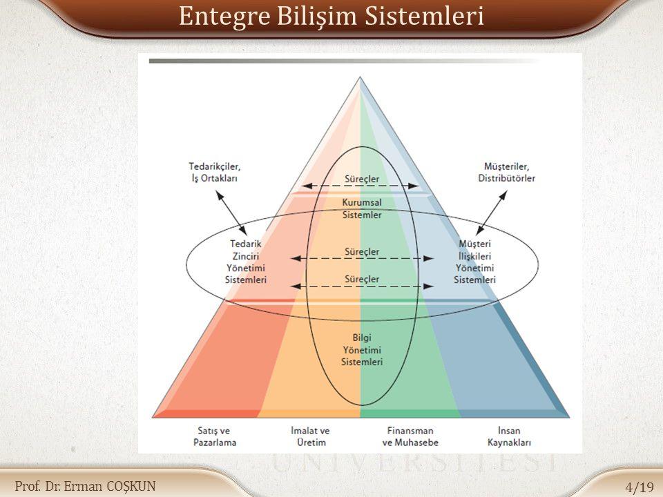Entegre Bilişim Sistemleri