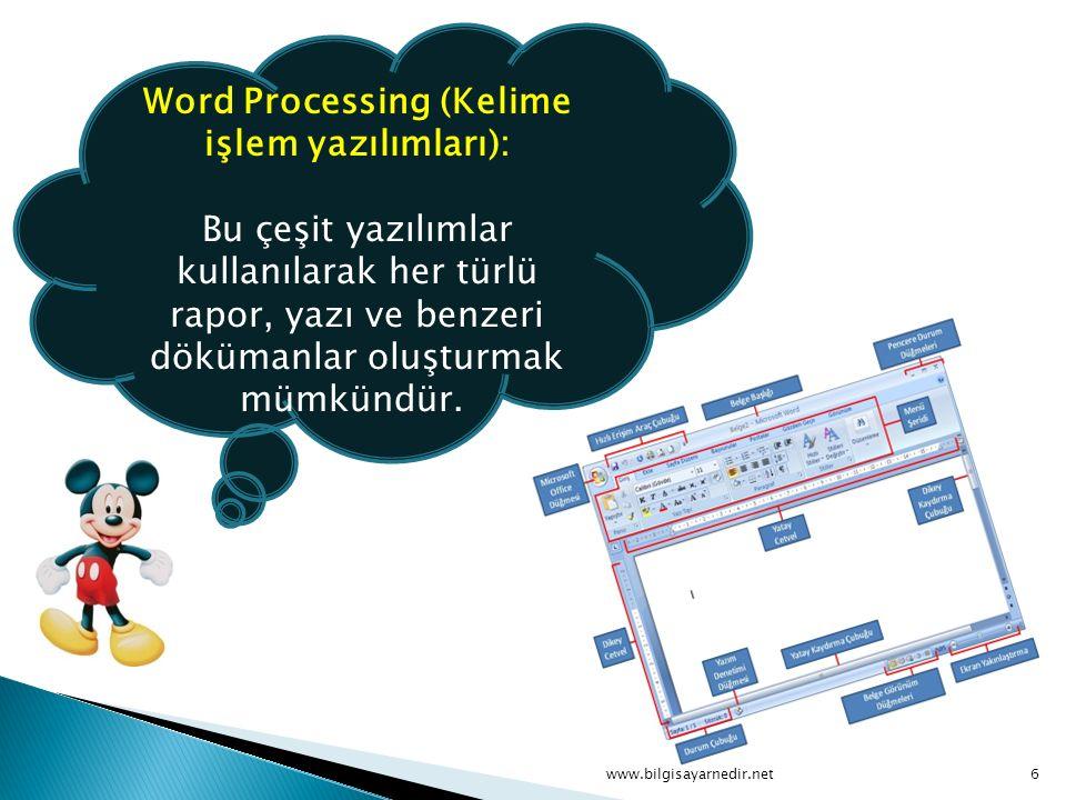 Word Processing (Kelime işlem yazılımları):