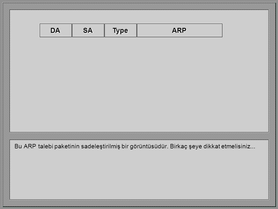 DA SA. Type. ARP. Bu ARP talebi paketinin sadeleştirilmiş bir görüntüsüdür.