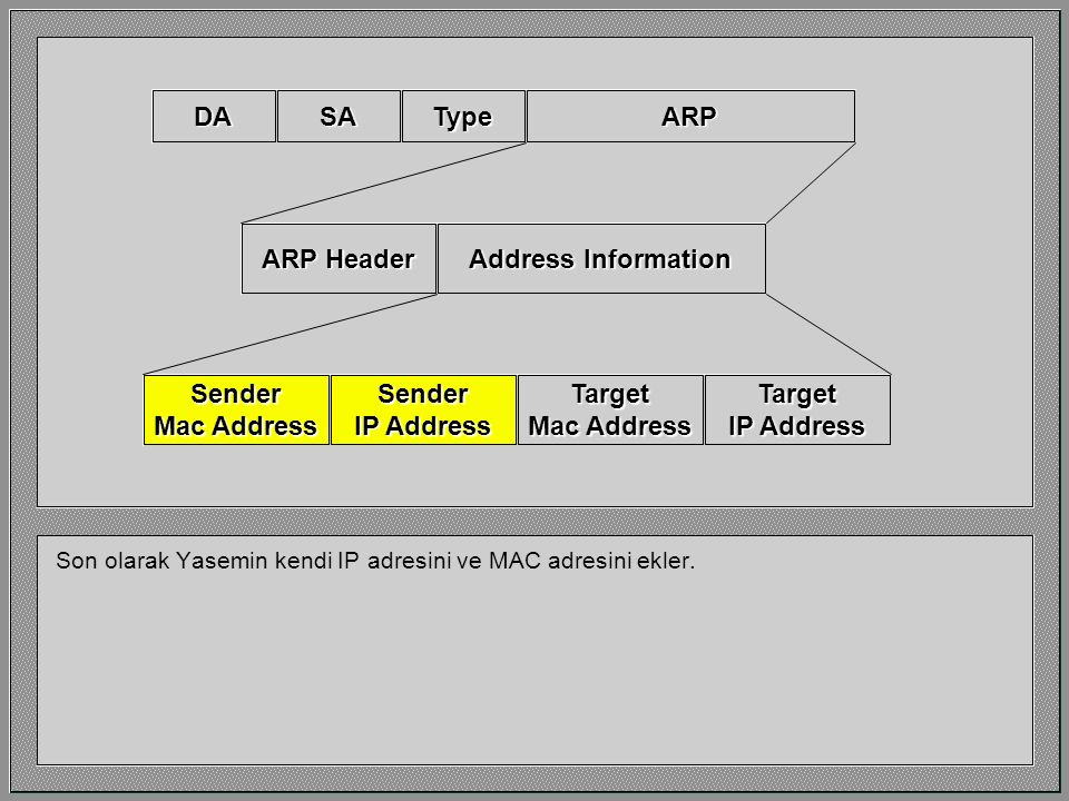 DA SA Type ARP ARP Header Address Information Sender Mac Address