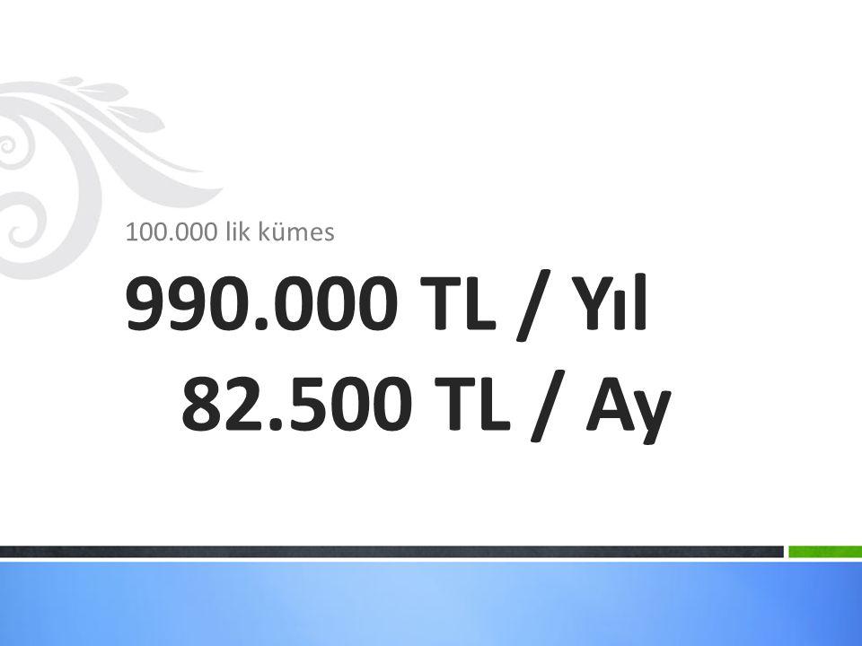 100.000 lik kümes 990.000 TL / Yıl 82.500 TL / Ay