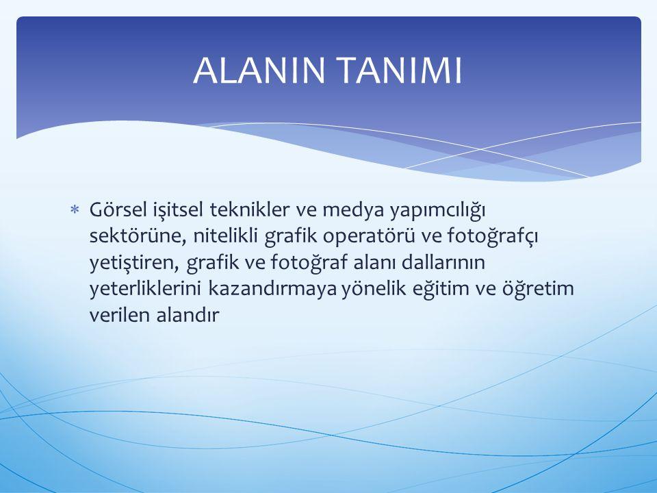 ALANIN TANIMI