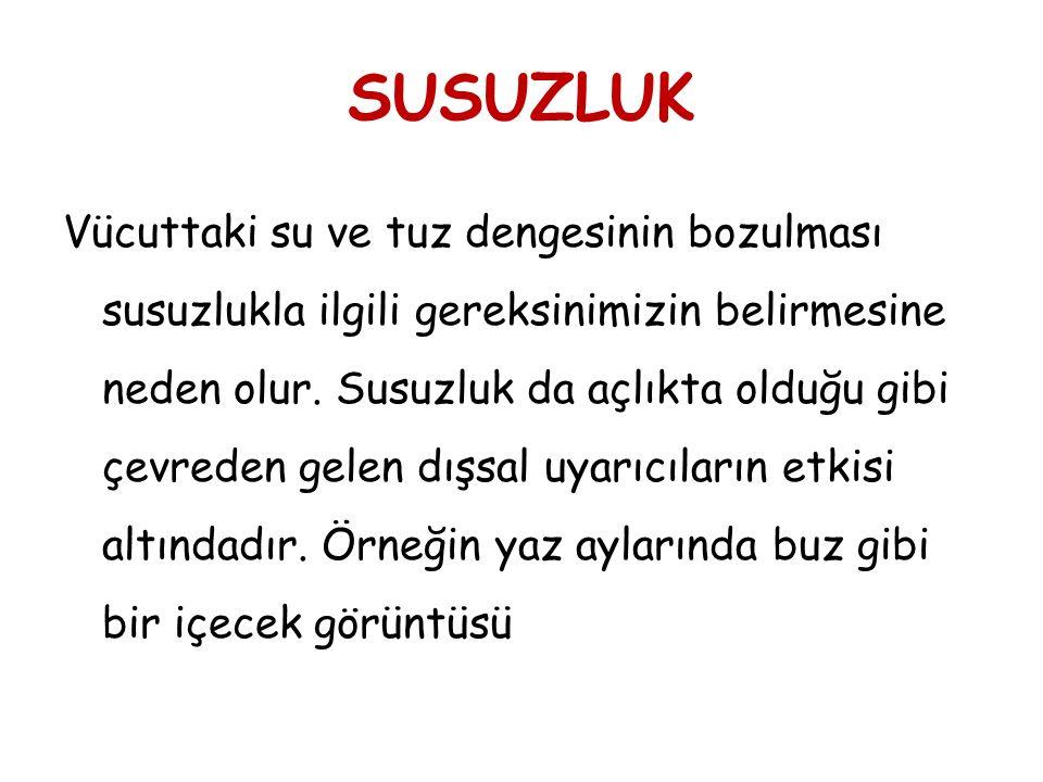 SUSUZLUK
