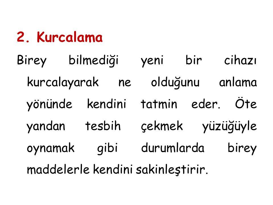 2. Kurcalama