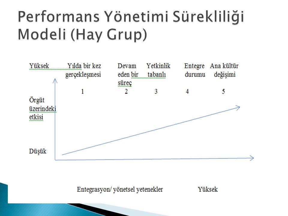 Performans Yönetimi Sürekliliği Modeli (Hay Grup)