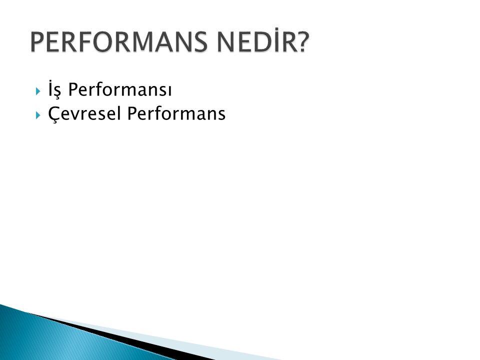 PERFORMANS NEDİR İş Performansı Çevresel Performans