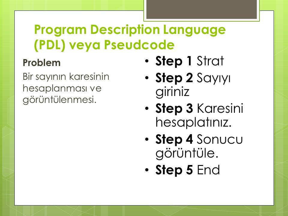 Program Description Language (PDL) veya Pseudcode