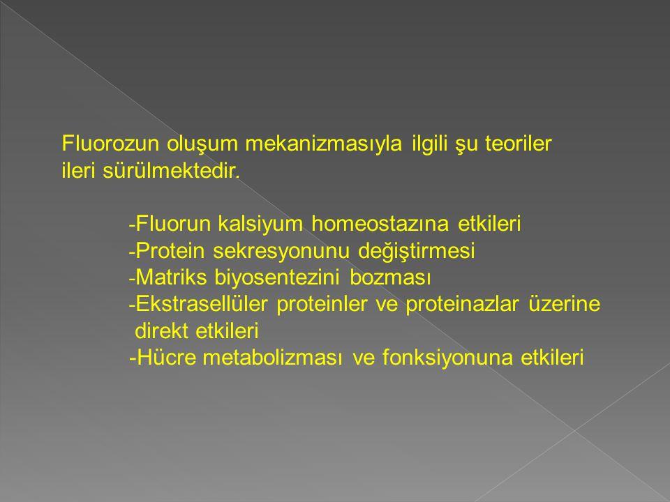 Fluorozun oluşum mekanizmasıyla ilgili şu teoriler