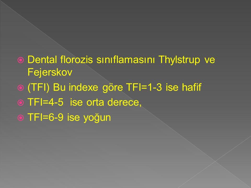 Dental florozis sınıflamasını Thylstrup ve Fejerskov
