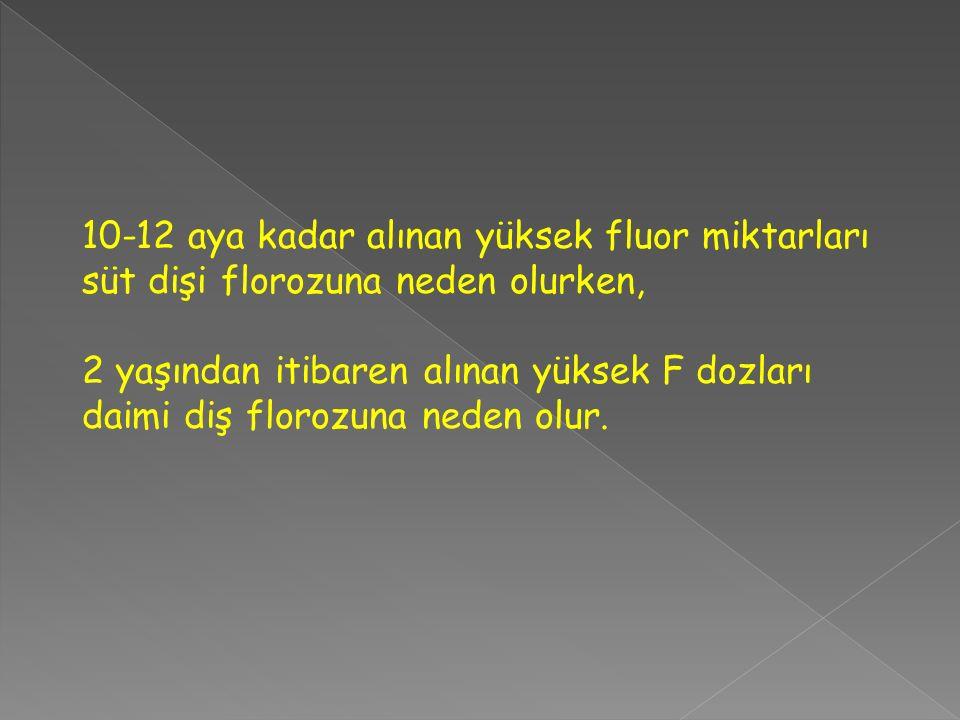 10-12 aya kadar alınan yüksek fluor miktarları