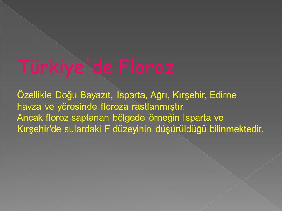 Türkiye de Floroz Özellikle Doğu Bayazıt, Isparta, Ağrı, Kırşehir, Edirne. havza ve yöresinde floroza rastlanmıştır.