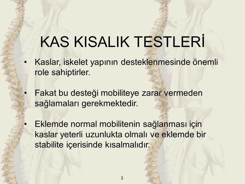 KAS KISALIK TESTLERİ Kaslar, iskelet yapının desteklenmesinde önemli role sahiptirler.